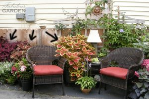 summer sitting area with arrows pointing to coleus plants