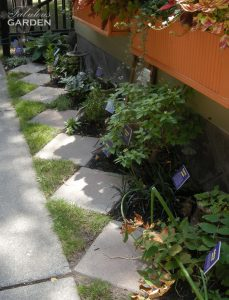 Diagonal stones and grass garden bed edgers--clever & functional