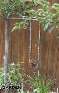 Metal frog swings from a pear tree limb