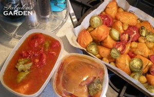 Tomatoes from the refrigerator, freezer, and just out of the oven