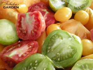 Sliced heirloom tomatoes in several colours