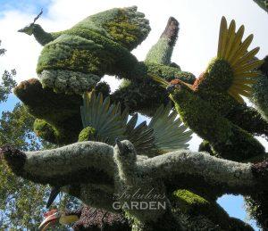 mosiculture birds from bird tree