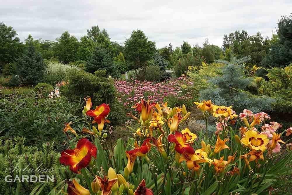 Whistling Gardens Botanical Garden