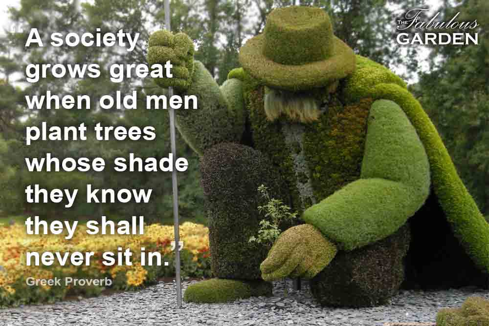 Favourite garden quotes and sayings