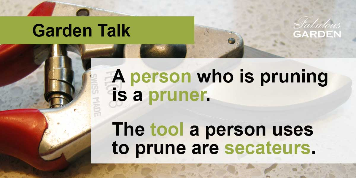 The difference between pruners and secateurs